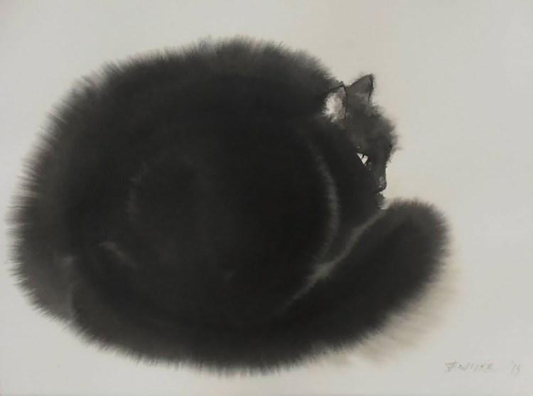 Black Cat Curled