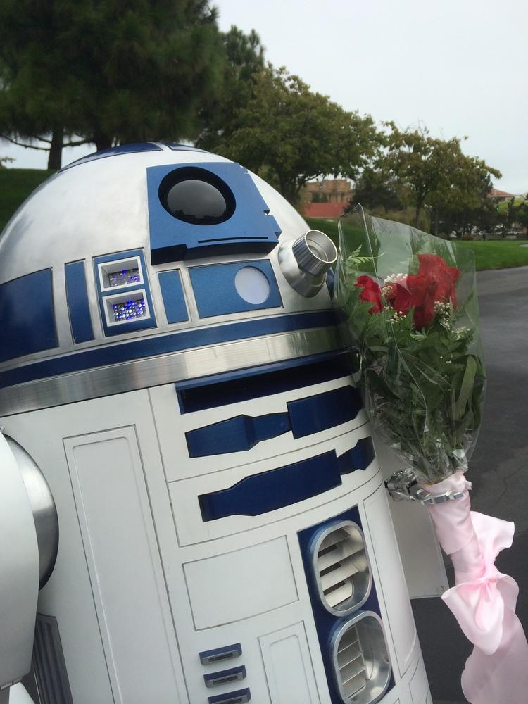 Artoo In Love