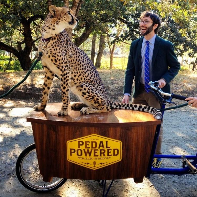 Cheetah and bike
