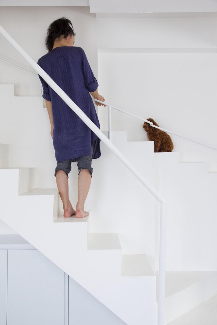 Person and Dog