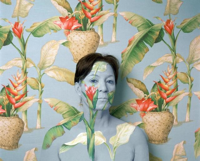 Landscape Series by Cecilia Paredes