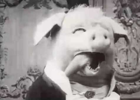 Dancing Pig 1907 Le Cochon Danseur  The Dancing