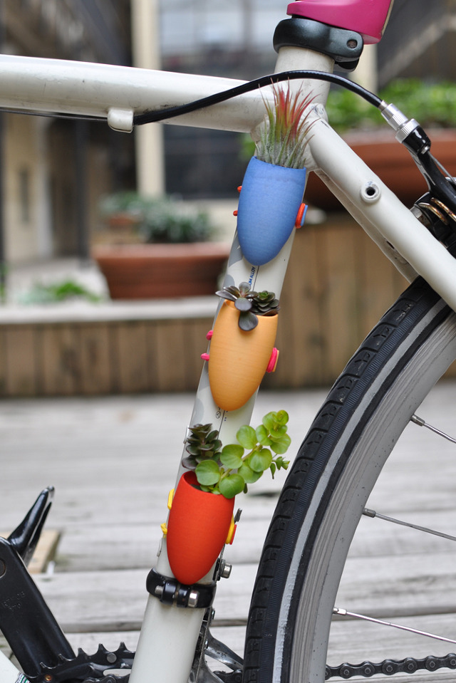Bicycle-mounted planter by Colleen Jordan