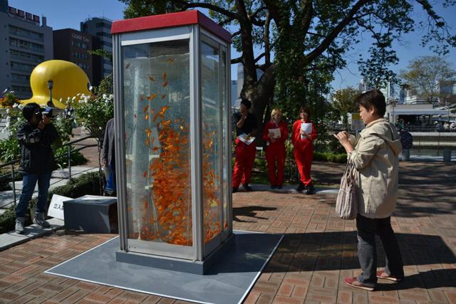 Goldfish Tank Phone Booth
