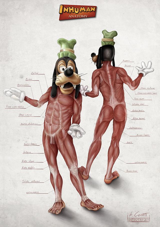 Goofy Anatomy by Alessandro Conti