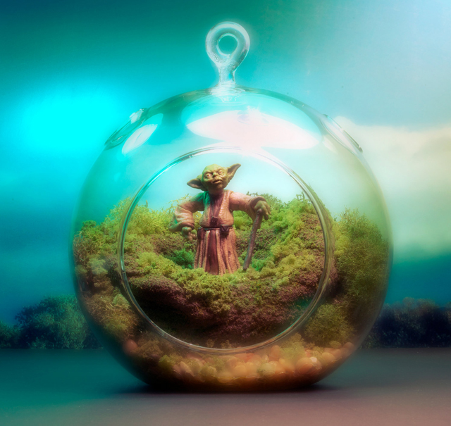 Yoda Terrarium - Star Wars - Hanging Moss Zen Garden by Tony Larson
