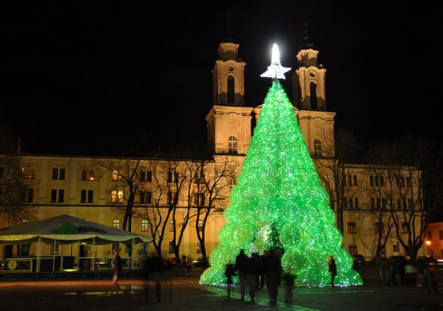 Plastic Bottle Christmas Tree by Jolanta Smidtiene