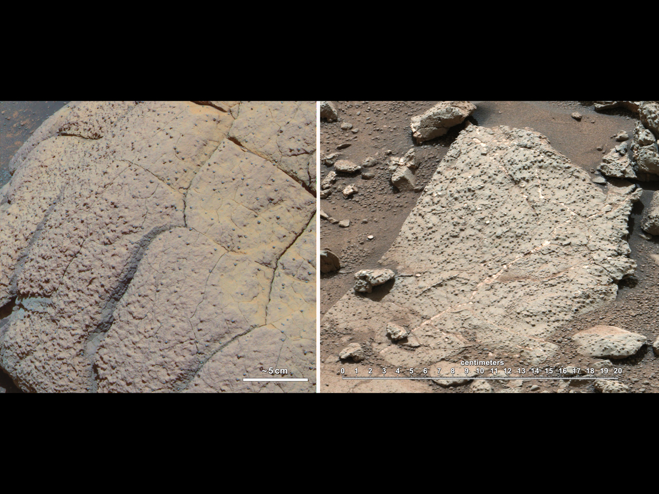 Ancient Mars Could Have Supported Life, Curiosity Rover Discovers
