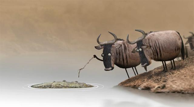 Wildebeest by Bird Box Studio
