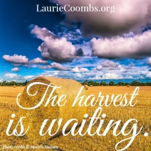 The Harvest is Waiting