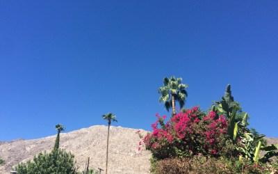 Palm Springs en été… on y fait quoi ?