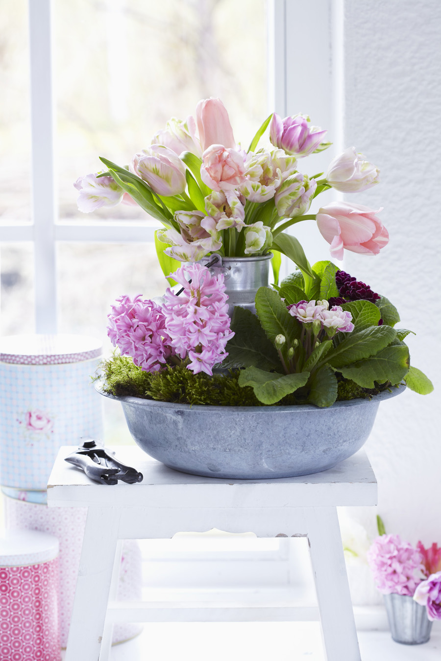 Zinc bowl of pink primulas and hyacinths and bouquet of tulips in milk jug