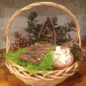 Astonishing Just Needed To Add A Fairy Garden Kit My Debut Lazy Day Makeovers Kids Fairy Garden Kit