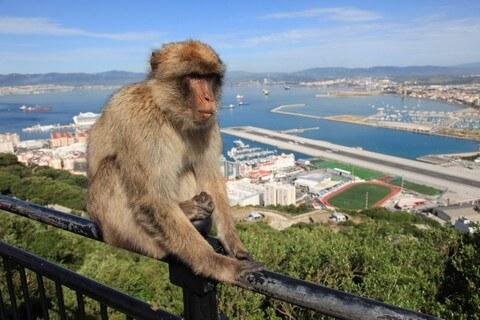 Gibraltar Airport homepage slider LBA