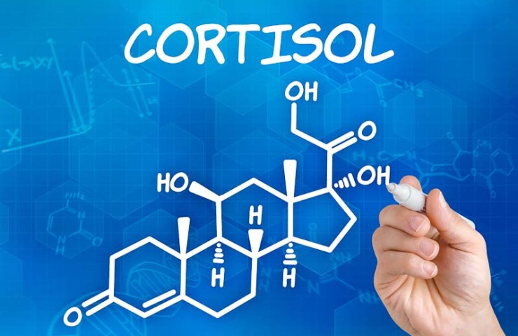 Cortizolul –  poate impiedica scaderea in greutate ?