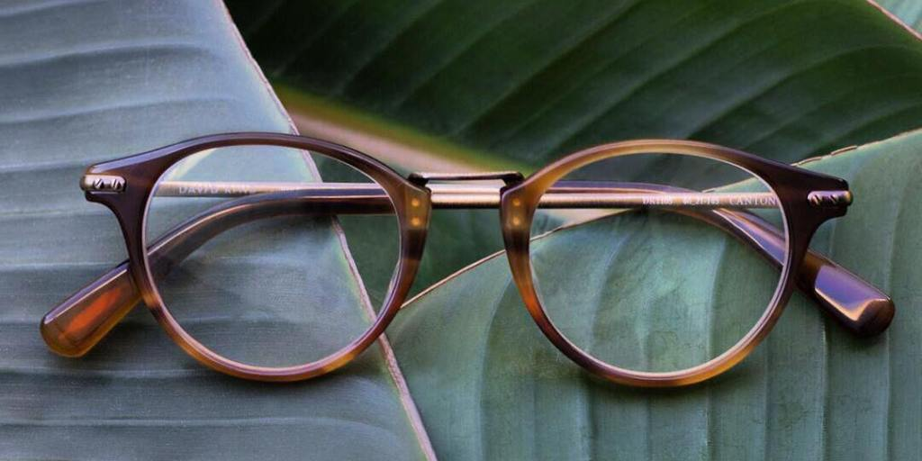 It's an eyewear jungle out there | Photo credit: David Kind