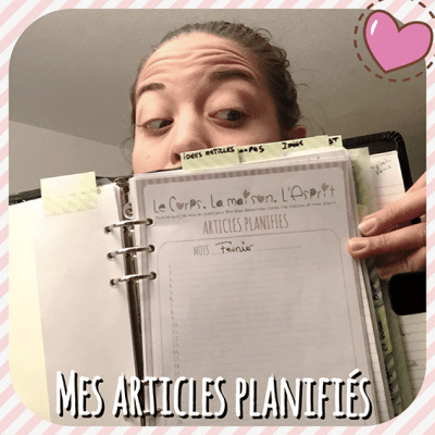JE-SUIS-ORGANISEE_-ARTICLES-PLANIFIES2