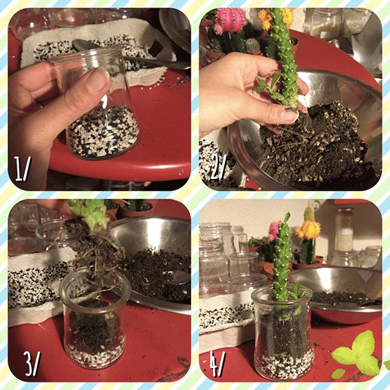 DIY spécial jardinage à la maison