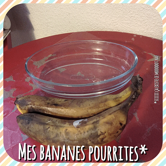 MES-BANANES-POURRITES3