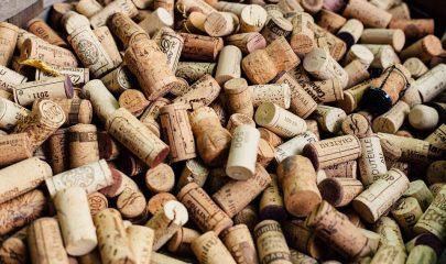 premier semestre vin