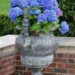 Lee Ann Torrans - Flower-Pots