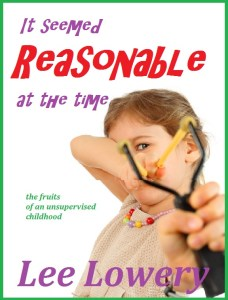 It Seemed Reasonable cover5