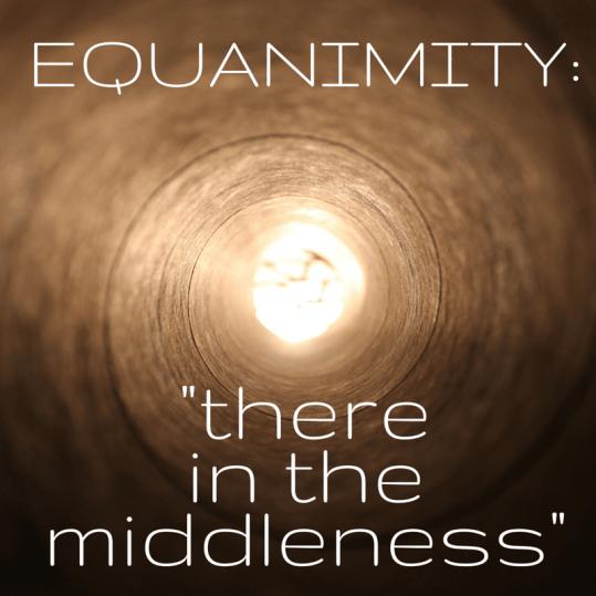 Equanimity-