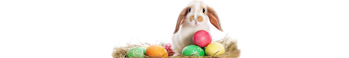 Benefit payments over Easter 2015 Bank Holiday