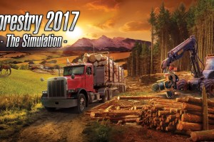 Leah Looks At: Forestry 2017 – The Simulation