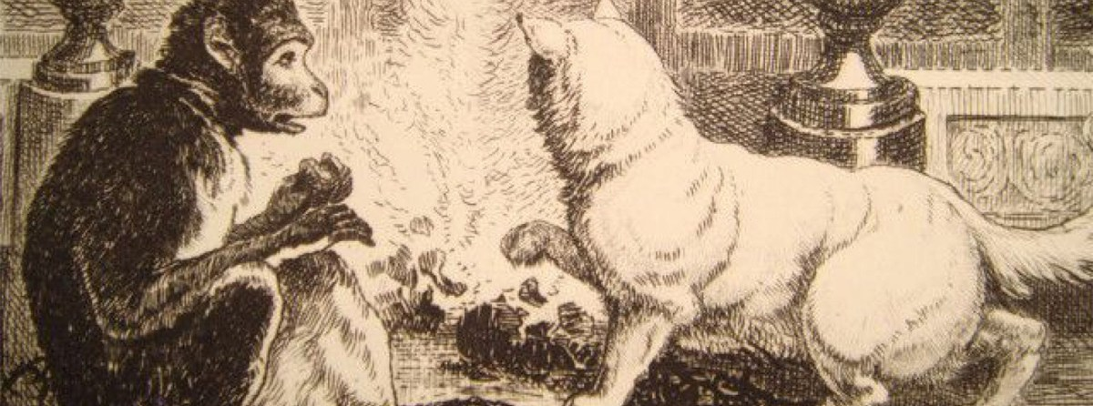b6988e68161 La chat chez La Fontaine – Le GentleBlog