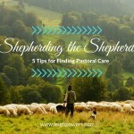 Shepherding the Shepherd