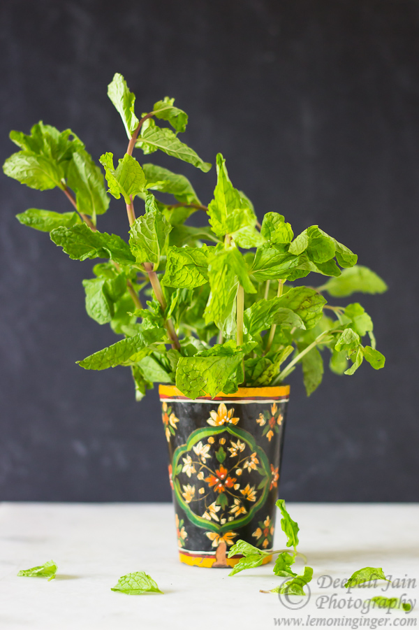 Dried Mint Leaves | How To