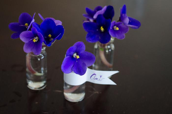 DIY Mini Violet Arrangement - lemonthistle.com