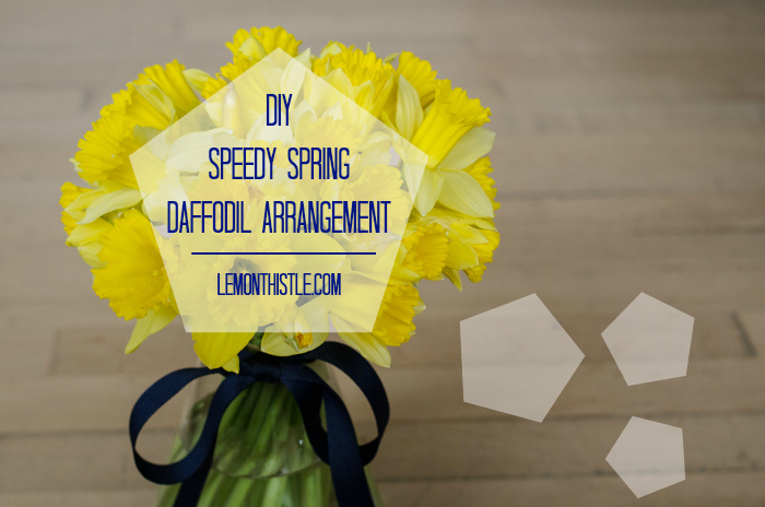 DIY Spring Daffodil Arrangement - lemonthistle.com