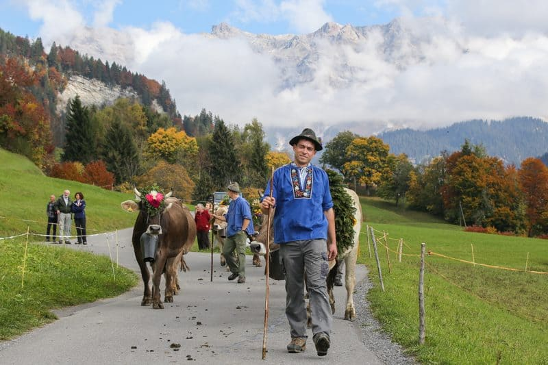 Prättigauer Alp Spectacle - source: Facebook