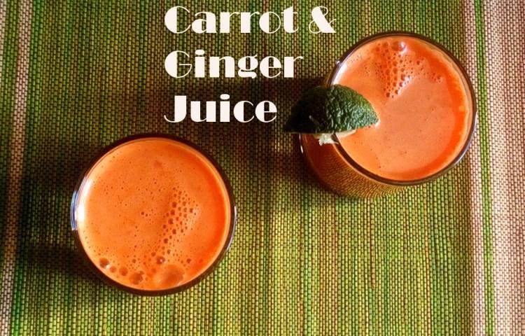 carrot-ginger-leotunapika-7