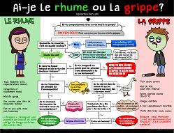 grippe2017-org-full-thumbPDF