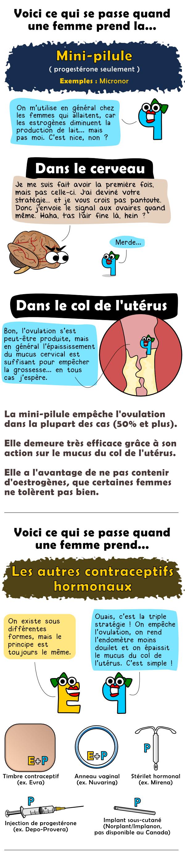 La mini-pilule (progestérone seulement) et les autres contraceptifs hormonaux