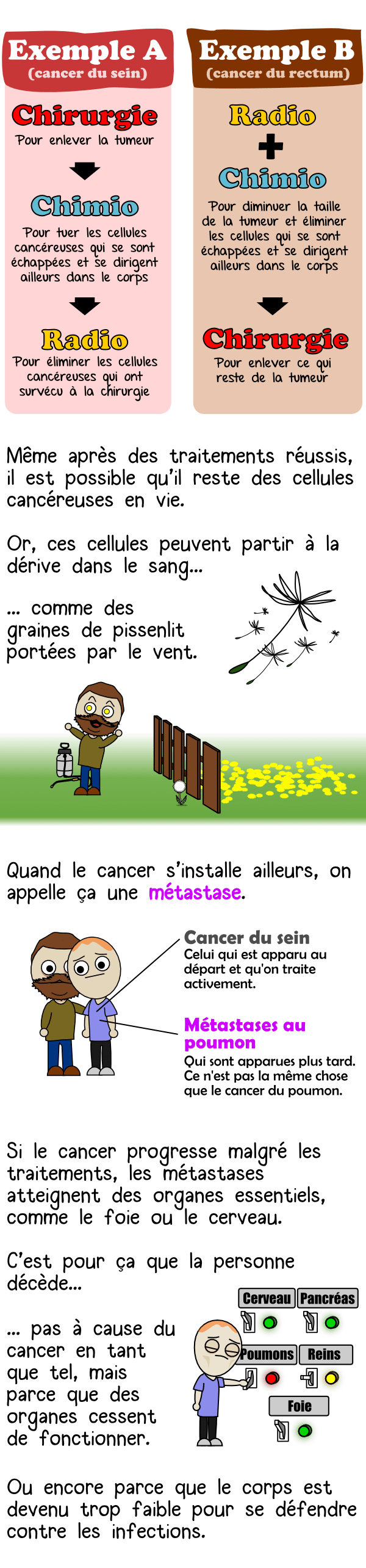 UN PETIT COIN DE CULTURE Cancer07