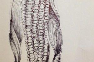 dessin-contemporain-stylo-#2.69-7janv-1bl
