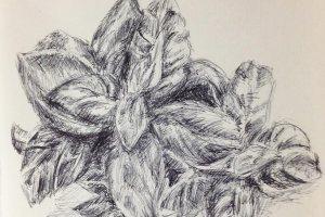 dessin-contemporain-stylo-#2.69mer7janv-1l