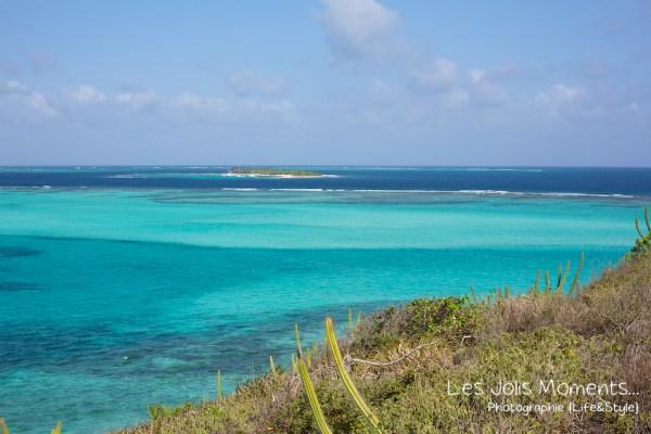 Tobago Cays bis 5