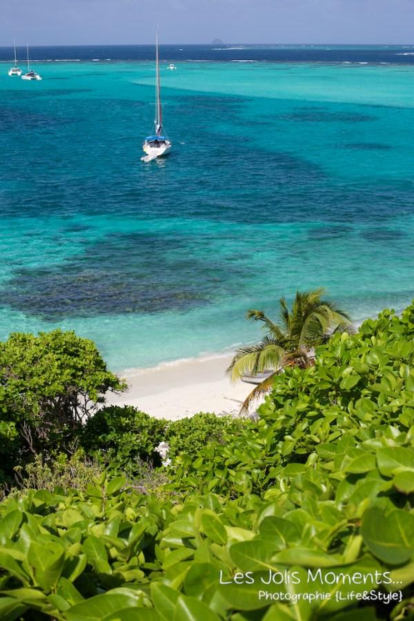 Tobago Cays bis 6