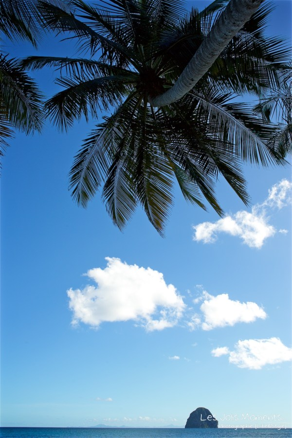Ceremonie de mariage sur une plage de Martinique 4