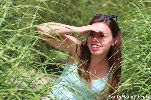 2016-08-25- Centaurée fleurie- les lubies de louise-27