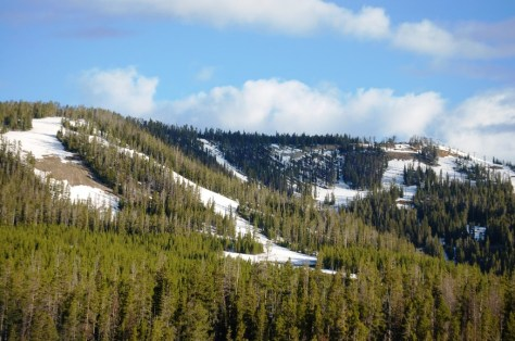 Ski Trails of Showdown near Kings Hill Pass