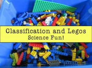 LEGO Classification Lesson - The Homeschool Post