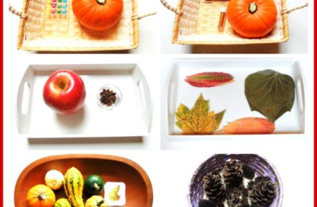 Fall Sensory Trays for Little Kids