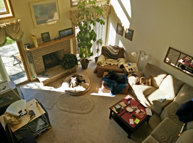 A view of my current humble abode, back when Clarke was still around. And yes, feel free to put your feet up on the coffee table. I don't mind at all.
