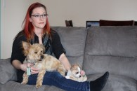 Local resident Tyreen Martin said additional pet fees are making it impossible to find affordable rentals in the city. In Alberta, the Residential Tenancies Act states landlords can accept or refuse pets and charge additional deposits and monthly pet rent. However, its these fees that many say are just too high.